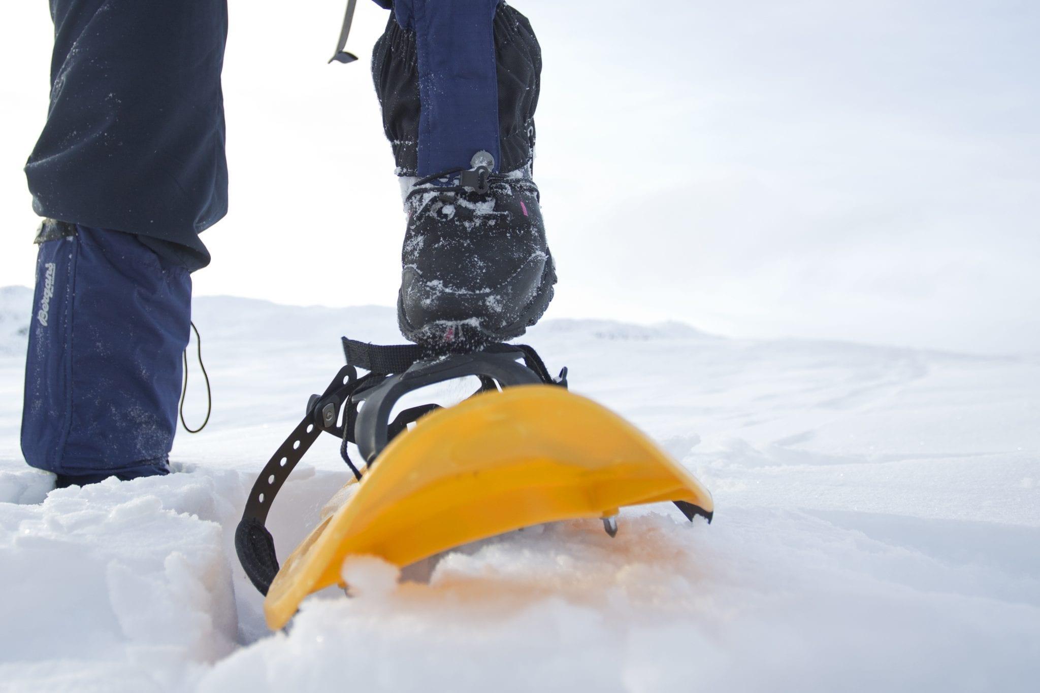 Vandring i vinterlandskap