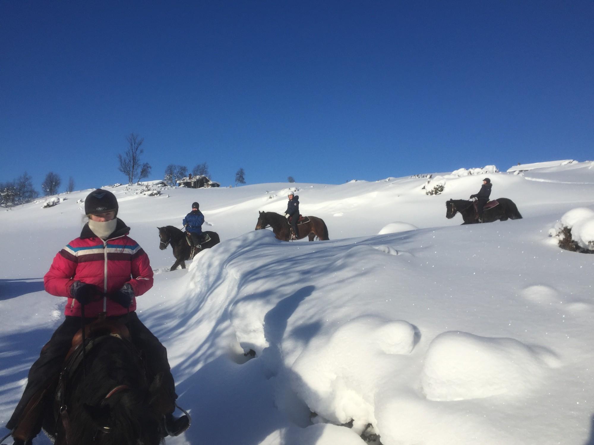 Vintertur på hesteryggen